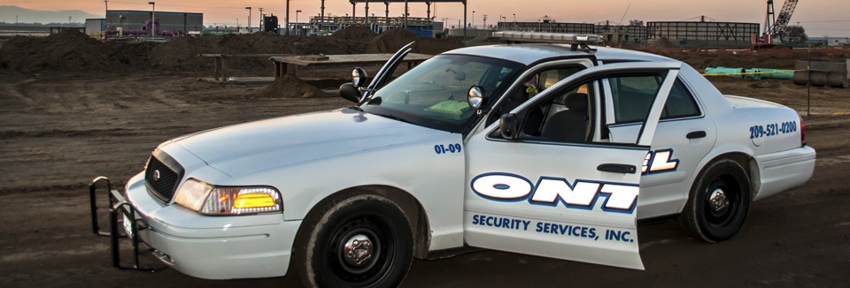 Ontel security